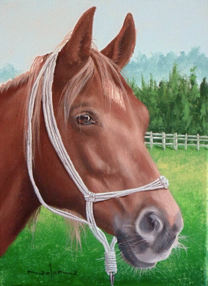 How To Paint A Horse Portrait In Acrylic Online Art Lessons