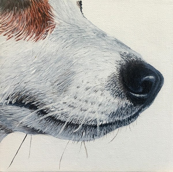 How to paint a realistic jack russel in this dog painting course