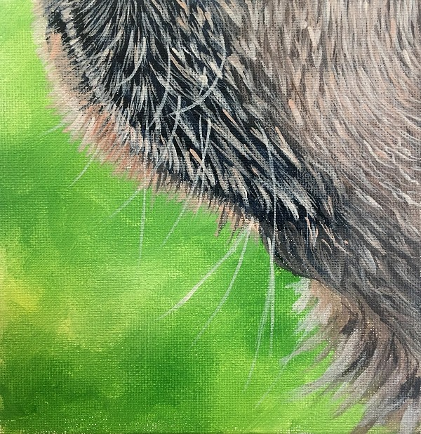 How to paint realistic wet dog hair
