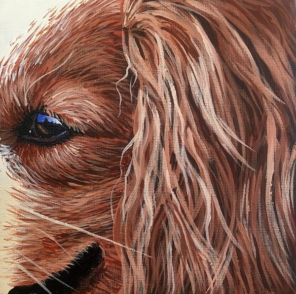 How to paint realistic long and matted dog hair